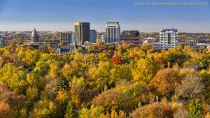 Boise City of Trees